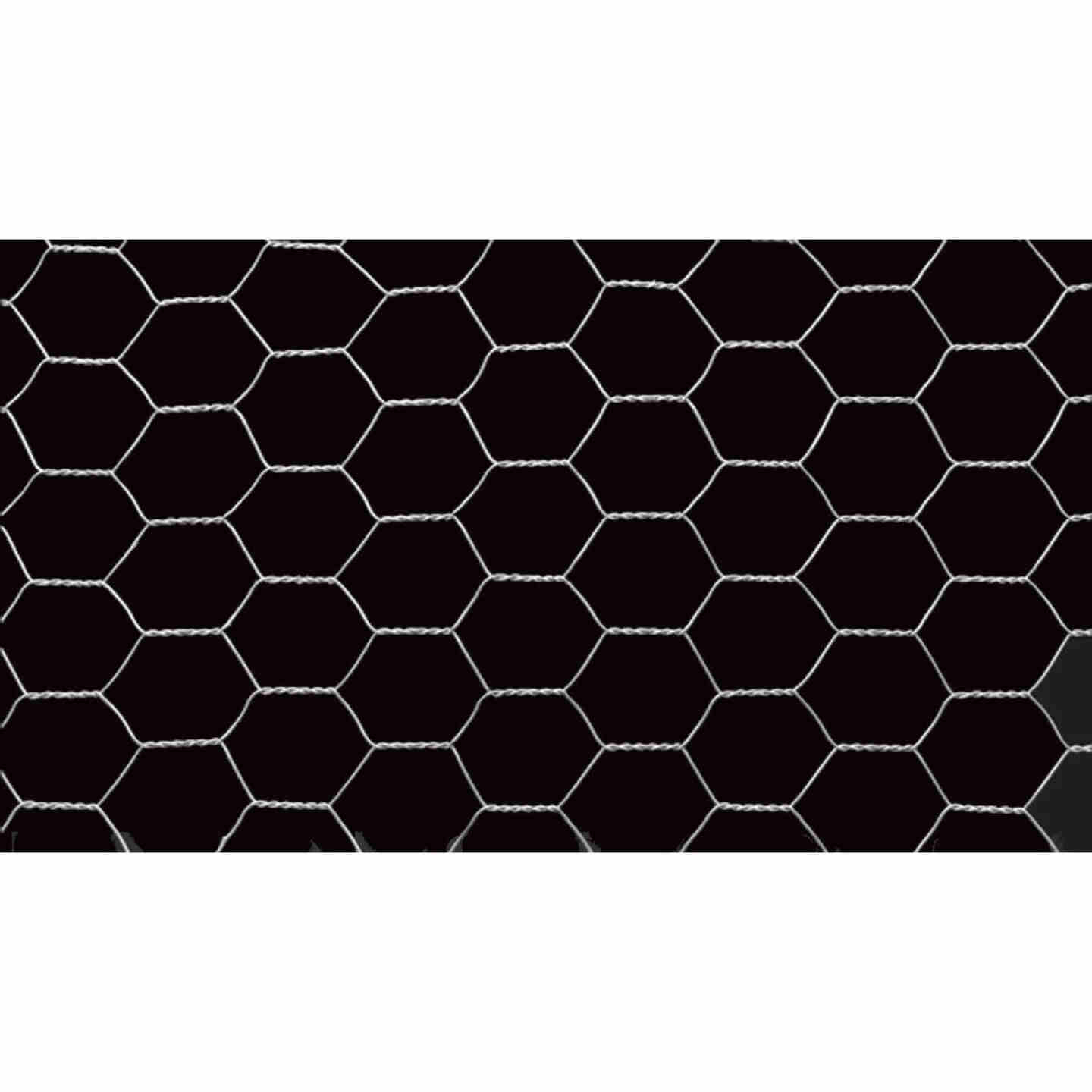 Do it 2 In. x 24 In. H. x 150 Ft. L. Hexagonal Wire Poultry Netting Image 3